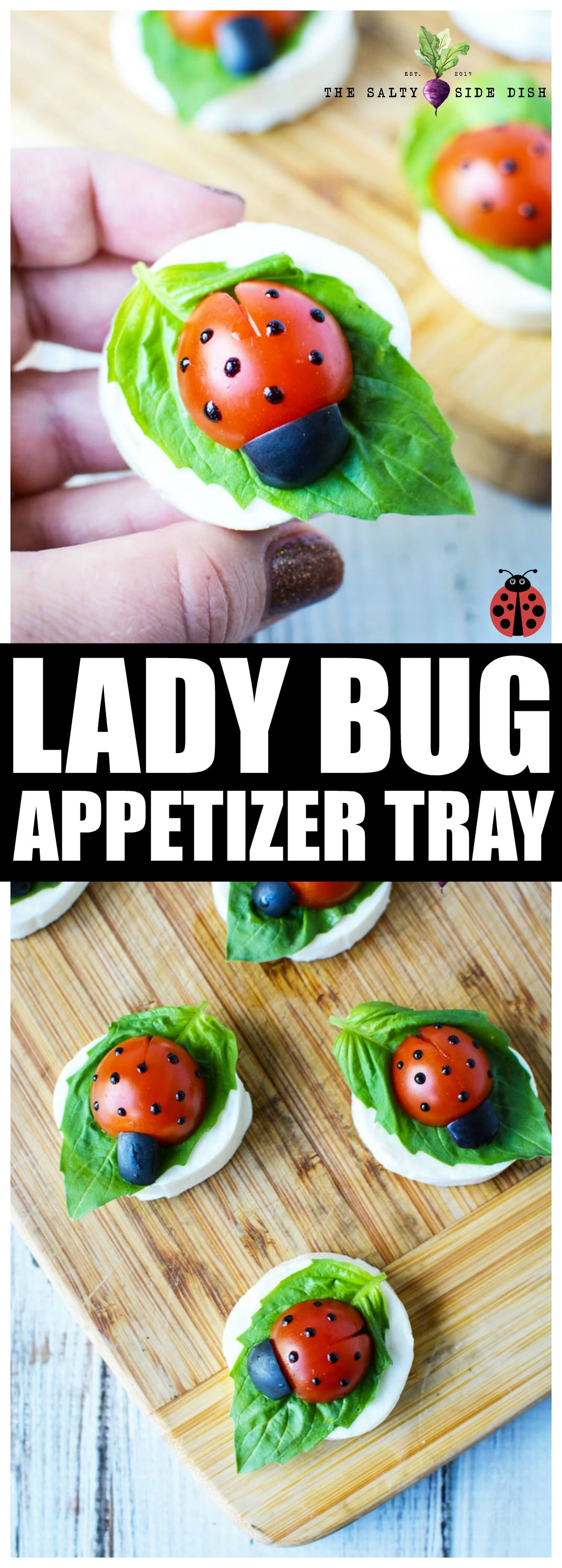 Caprese Salad Appetizer Bites | Mini LadyBug Party Platter Recipe perfect for a side dish or appetizer tray #appetizer #sidedish #foodanimal #recipes #party #platter