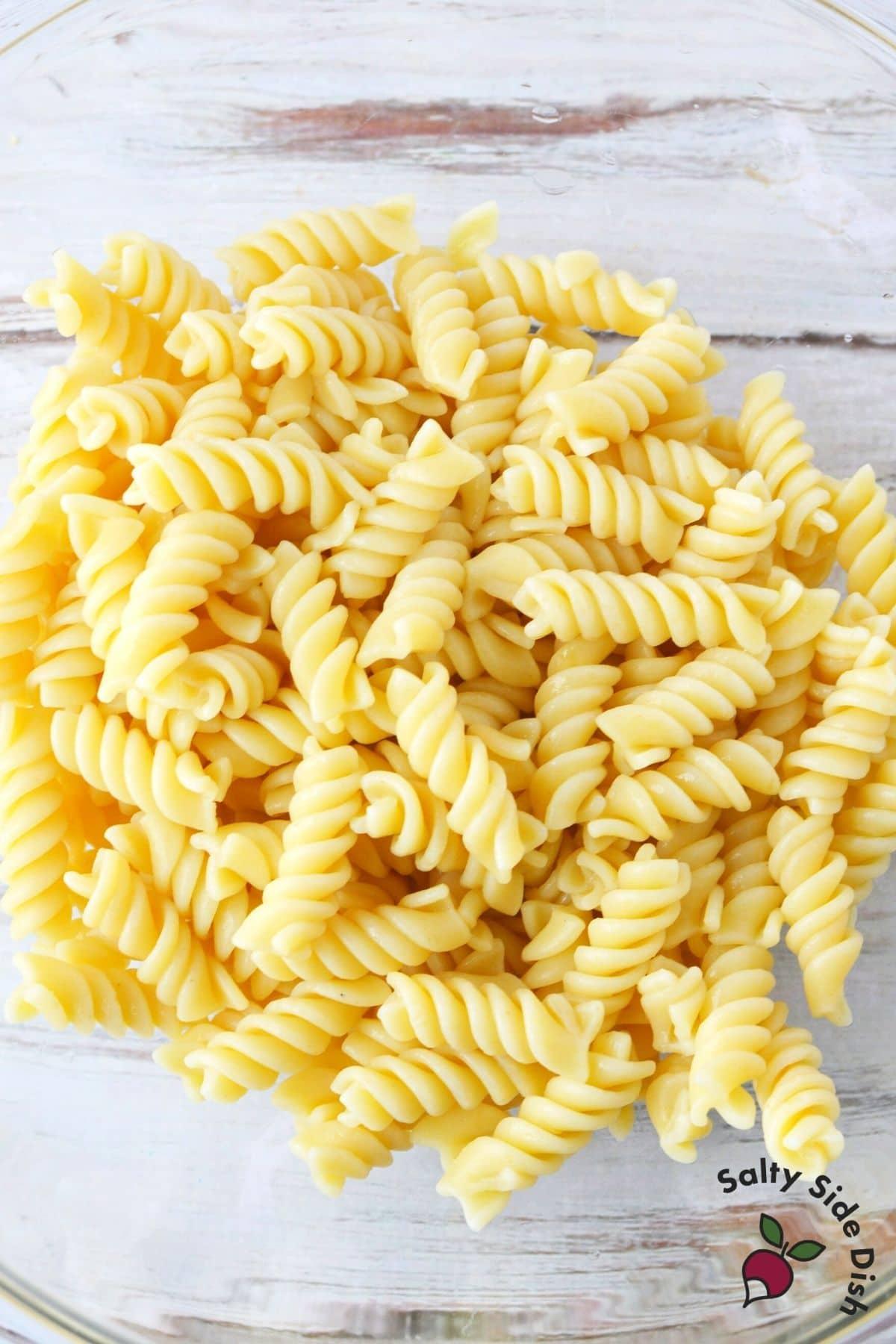 rotini pasta shells