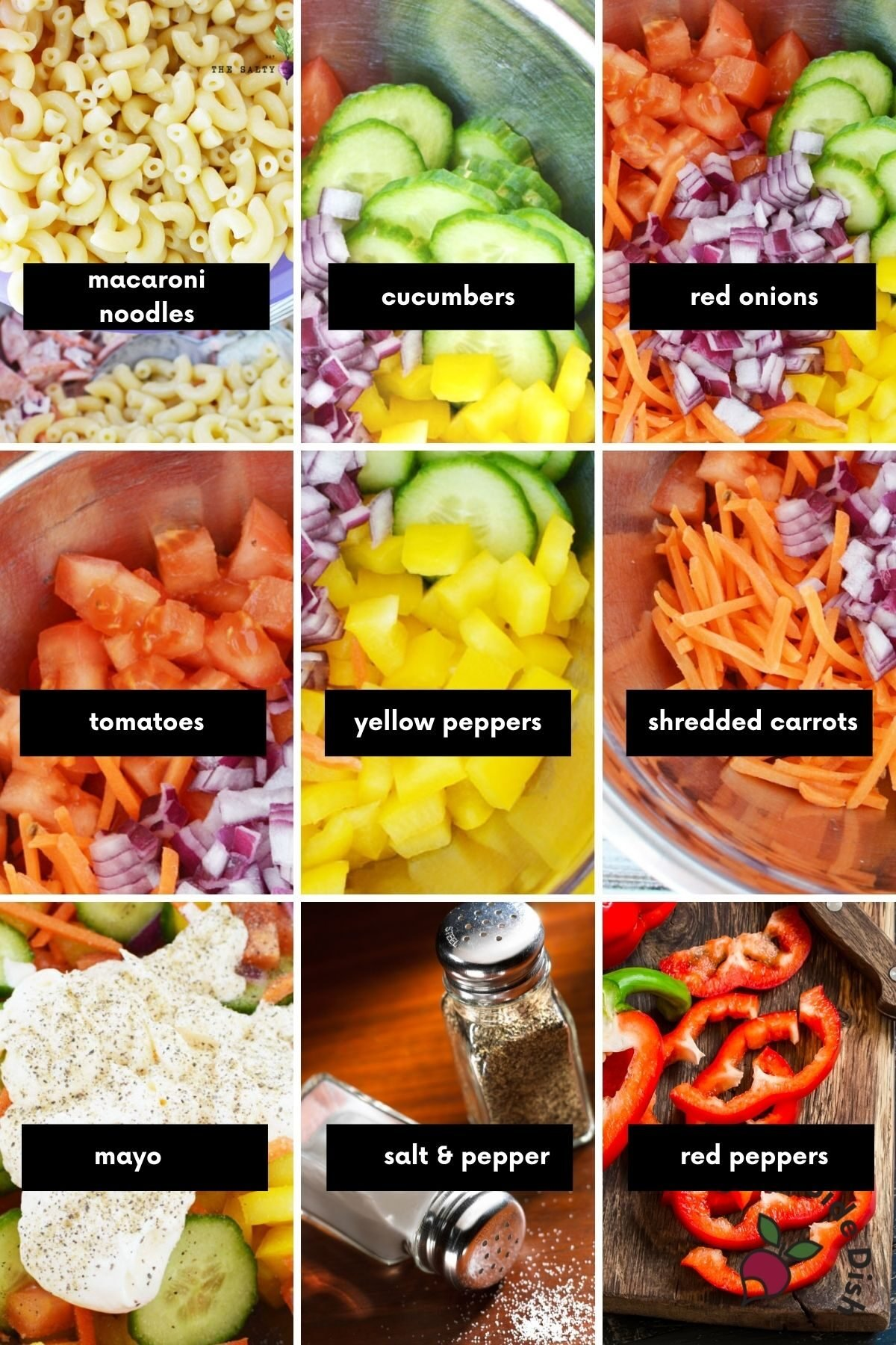 collage showing each ingredient for vegetable pasta salad with a label.