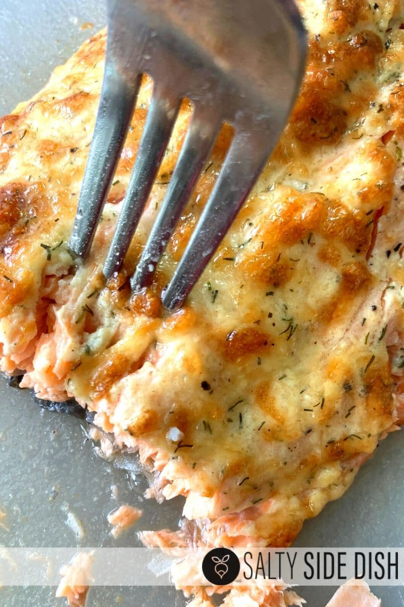 Flaky salmon crust with parmesan dill mayo crust being eaten with a fork for dinner