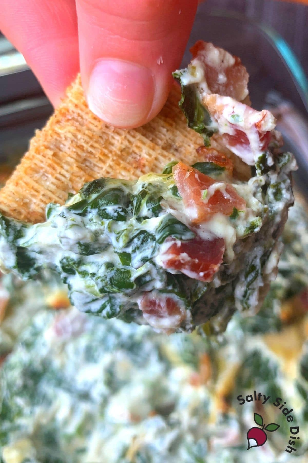 chunks of bacon on a triscuit with artichoke spinach dip being held by fingers